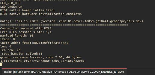 gcoap_output